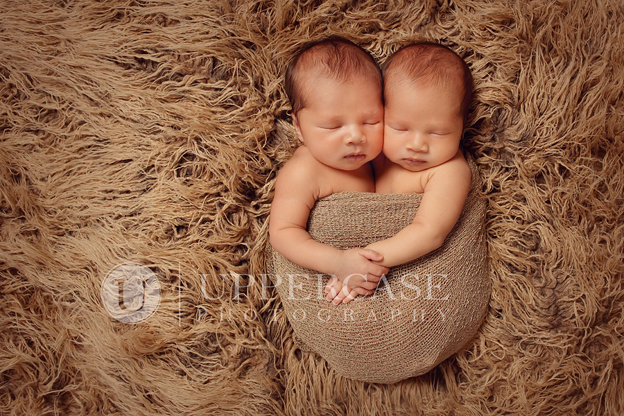 greensborobabyphotographer10
