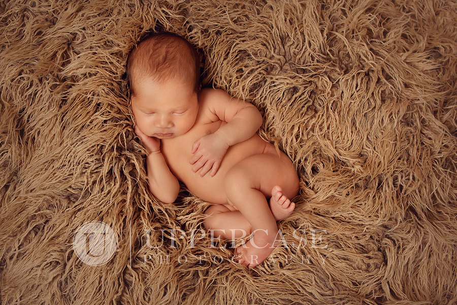 greensborobabyphotographer11